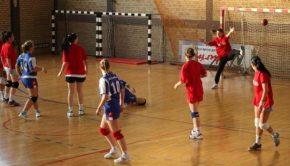 slike_vesti-sport-rukomet-zork-zork3